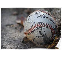 Dog's baseball Poster