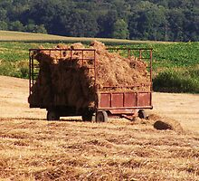 Hay Wagon by James Brotherton