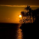 Fijian Sunset by Razorgrass