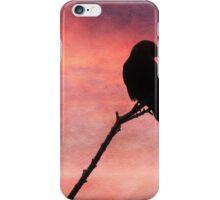 Jackdaw Sunset iPhone Case/Skin