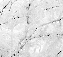 White Autumn by David Schroeder