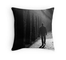 OnePhotoPerDay Series: 303 by C. Throw Pillow