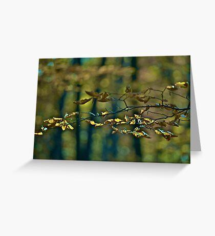 ♥ ♥ ♥ ♥ . Life Is Too Short .  by Brown Sugar . Favorites: 7 Views: 827  . i znowu mamy jesień ! Greeting Card