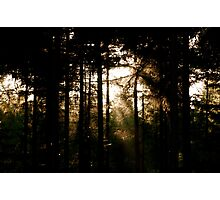 The Fading Light Photographic Print