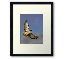 hawk ascending Framed Print