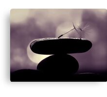 finding the balance Canvas Print