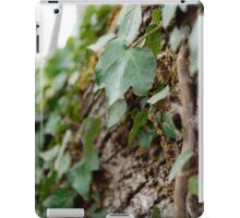 Elf Leaf iPad Case/Skin