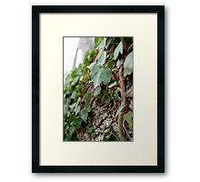 Elf Leaf Framed Print