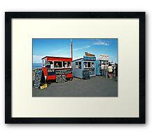 Farne Islands boat trips, Seahouses, NE England, 1980s. Framed Print