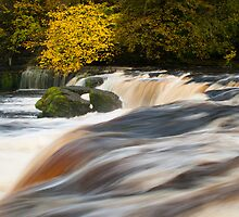 Aysgarth Upper Falls by James Dolan
