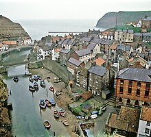 Staithes, North Yorkshire, NE England. by David A. L. Davies