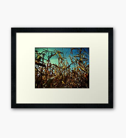 The Cornfields Rise Above Mankind Framed Print