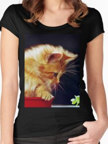 Cat On Red Tin Women's Fitted Scoop T-Shirt