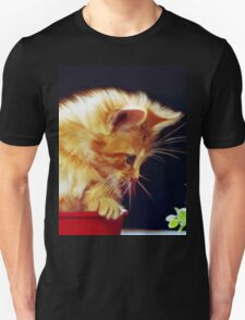 Cat On Red Tin T-Shirt