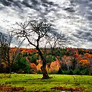NH Autumn Afternoon by Edward Myers