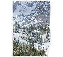 Winter Pines II Poster