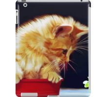Cat On Red Tin iPad Case/Skin