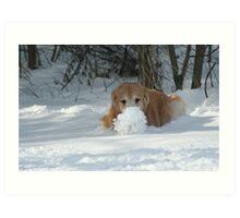 Look At My Snow Ball Ma! Art Print