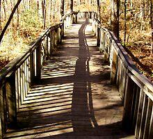 Shadow Walk by olehippy13