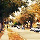 Autumn road 2 by yoshi747