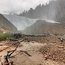 Misty, rainy falls by zumi