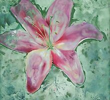 Madonna's in Lily by Cheryl White