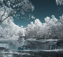 The Blue Lagoon by lightsmith