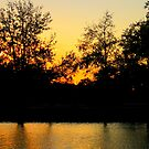Sunset @ Bayou St. John by L.D. Bonner
