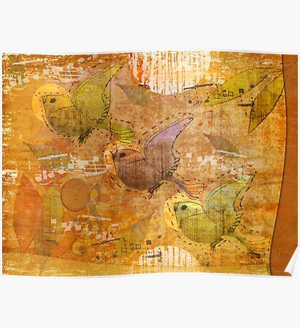 song birds Poster