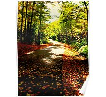 The winding pathways of Fall Poster