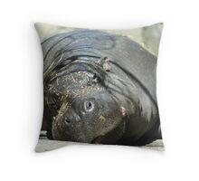 Hippo Nap Time Throw Pillow
