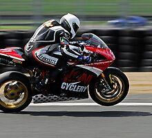 2010 Australian Formula Xtreme Championship Round 5 Eastern Creek Raceway   Fx Pro-Twins - Nakedbikes   Chris Knox   King of the Mountain Cyclery   Ducati 1198 S by DavidIori