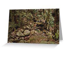 Wollumbin Rain Forest Greeting Card
