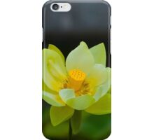 Yellow Petals iPhone Case/Skin