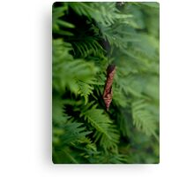 hanging out Metal Print
