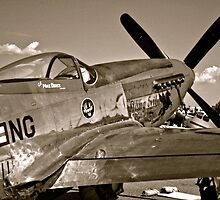 Stang Evil Vintage Mustage Fighter Plane by Amy McDaniel