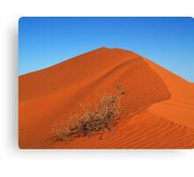 Sand dune of Simpson desert Canvas Print