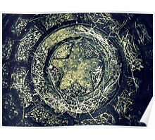 stars underfoot Poster
