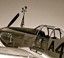 Tuskegee P-51 Mustange Vintage Fighter Plane by Amy McDaniel