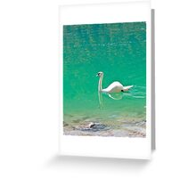 Swan on 'clear water of a lake (Italy) Greeting Card