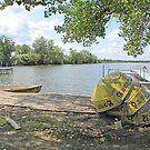 Mosquito Lake Rentals by Jack Ryan