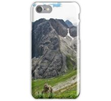 View from the top of a mountain 2 iPhone Case/Skin