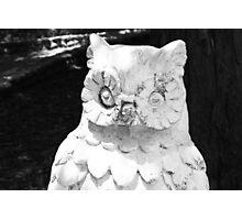 Spooky Owl Photographic Print