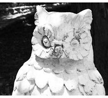Spooky Owl by jmethe