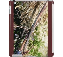 Stick insect Phasme story  6 paint  (c)(t) by Olao-Olavia / Okaio Créations fz 1000 iPad Case/Skin