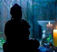 Buddha's Garden by Stephen Denham
