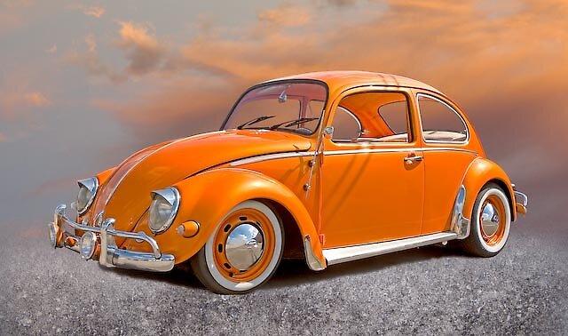 Lady Bug by Stephen Warren