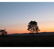 sunrise in the countryside Photographic Print