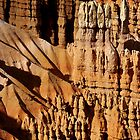 Stand Tall ~ Bryce Canyon by Vicki Pelham