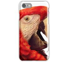 Scarlet Macaw Parrot realistic painting iPhone Case/Skin
